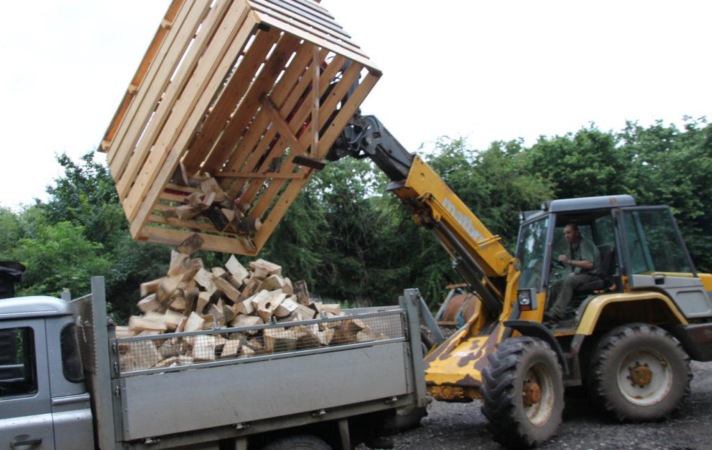 Clean firewood