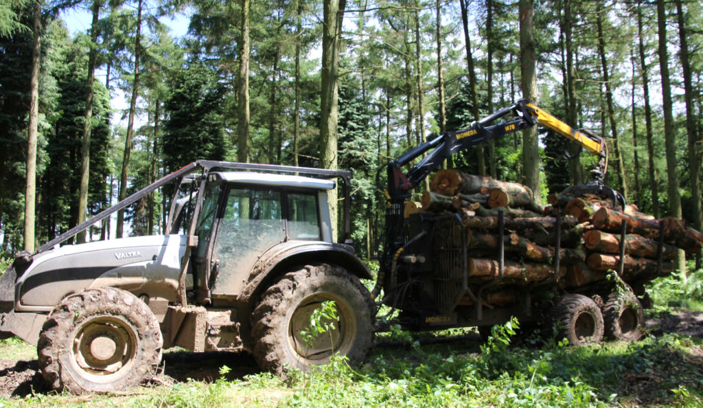 Tractor Forwarder Extracts Logs